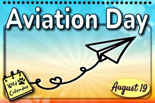 Read more about the article Aviation Day
