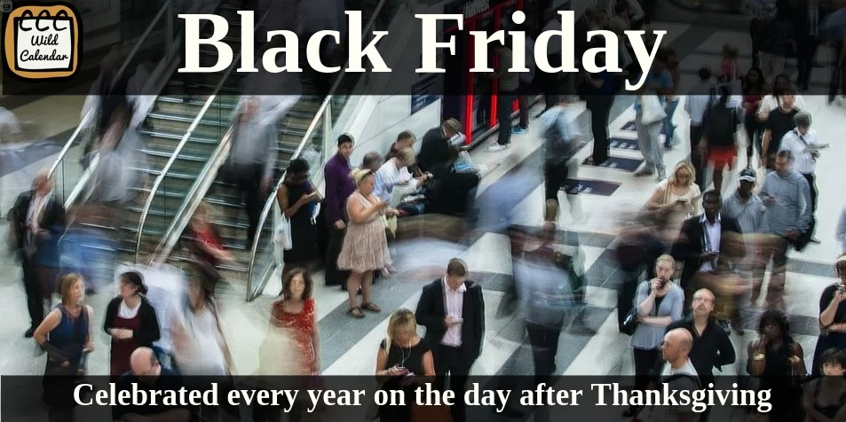 You are currently viewing Black Friday