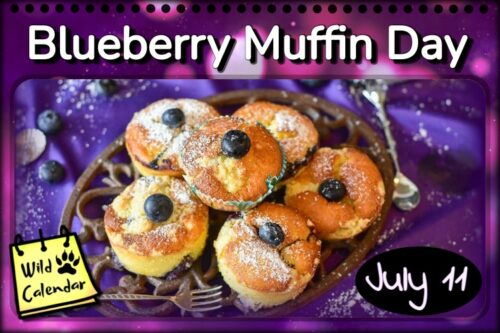 Read more about the article Blueberry Muffin Day