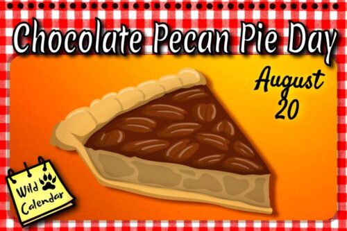 Read more about the article Chocolate Pecan Pie Day