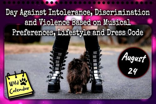 Read more about the article Day Against Intolerance, Discrimination and Violence Based on Musical Preferences, Lifestyle and Dress Code
