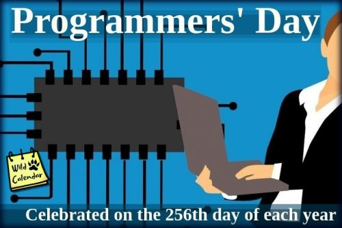 Read more about the article Day of the Programmer