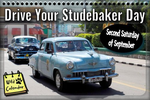Read more about the article International Drive Your Studebaker Day