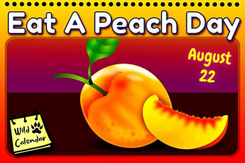 Read more about the article Eat A Peach Day