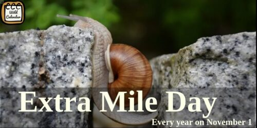 Read more about the article Extra Mile Day