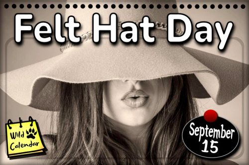 Read more about the article Felt Hat Day
