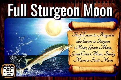 Read more about the article Full Sturgeon Moon