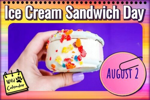 Read more about the article Ice Cream Sandwich Day
