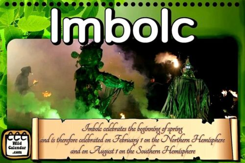 Read more about the article Imbolc (Southern Hemisphere)