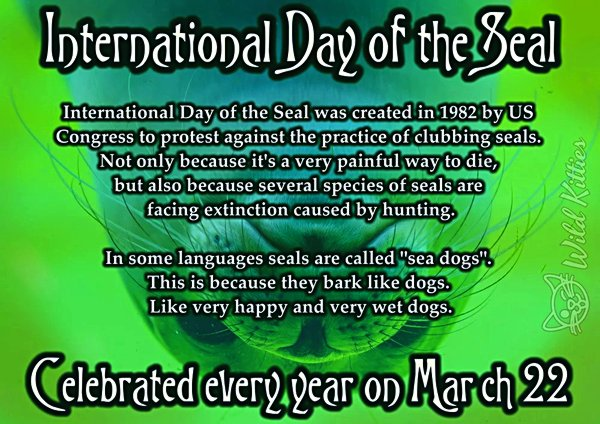 International-Day-of-the-Seal-L