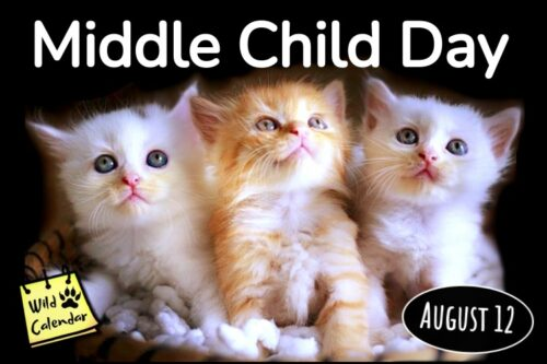 Read more about the article Middle Child Day