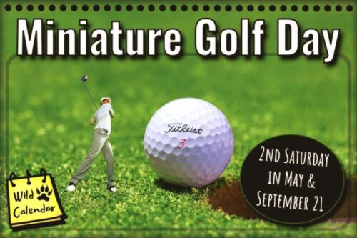 Read more about the article Miniature Golf Day