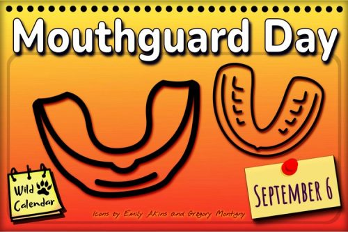 Read more about the article Mouthguard Day