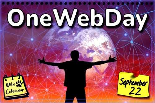 Read more about the article OneWebDay