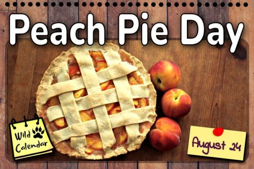 Read more about the article Peach Pie Day
