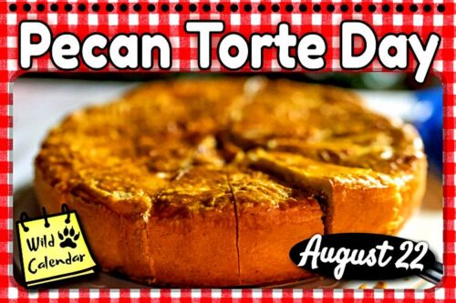 Read more about the article Pecan Torte Day