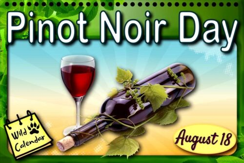 Read more about the article Pinot Noir Day