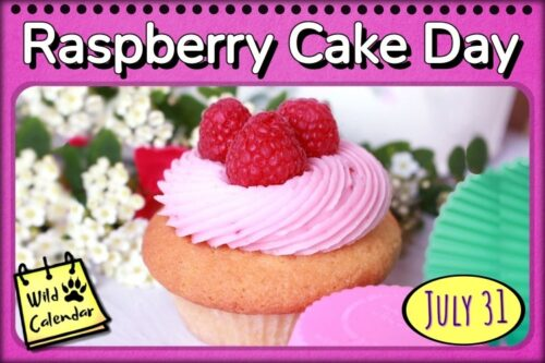 Read more about the article Raspberry Cake Day