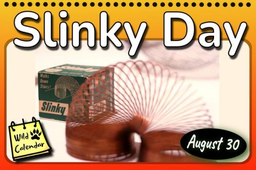 Read more about the article Slinky Day