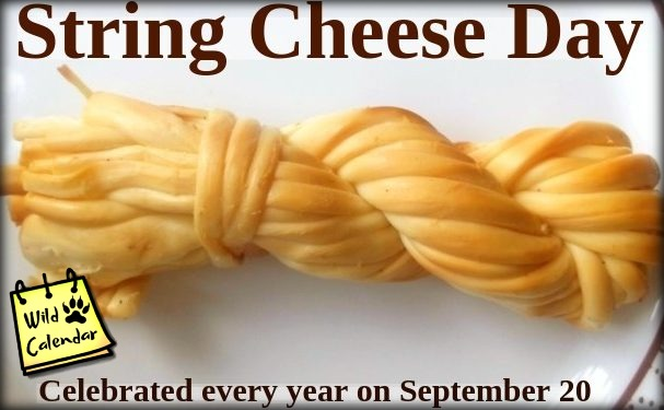 You are currently viewing String Cheese Day