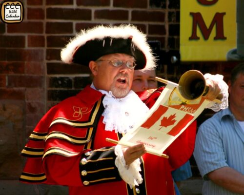 Read more about the article Town Criers Day