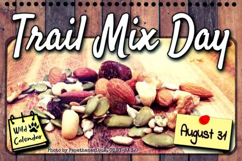 Read more about the article Trail Mix Day