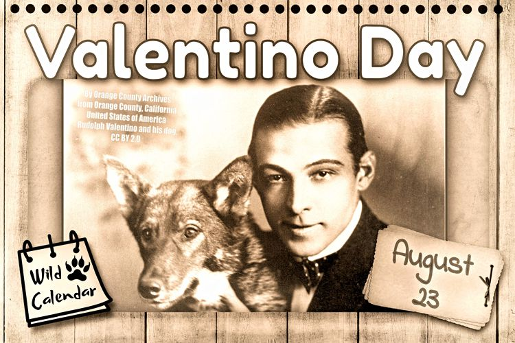 Read more about the article Valentino Day
