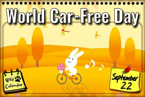 Read more about the article World Car-Free Day