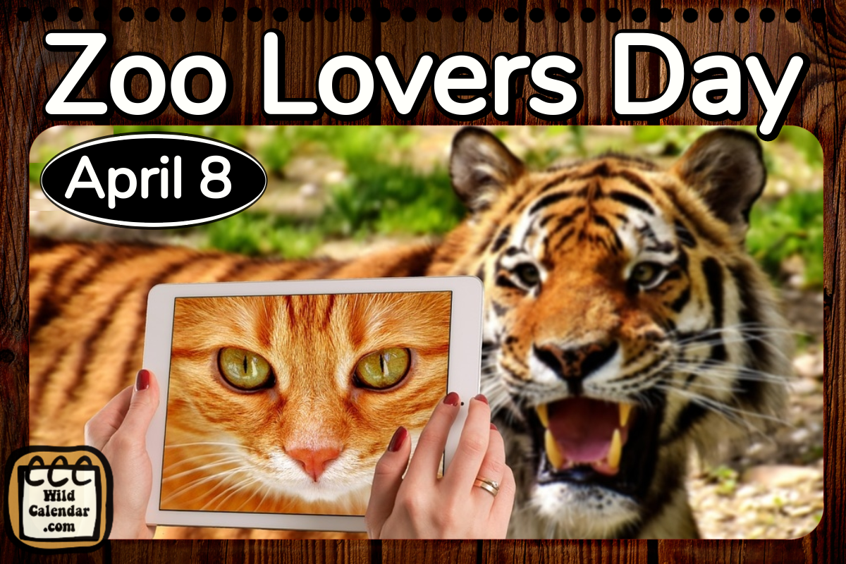 Zoo Lovers Day