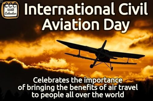 Read more about the article International Civil Aviation Day