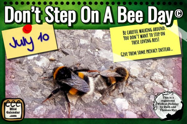 Don't Step On A Bee Day ©
