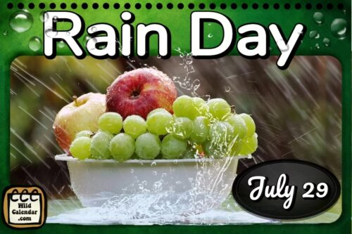Read more about the article Rain Day