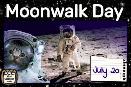 Read more about the article Moonwalk Day