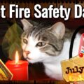Pet Fire Safety Day