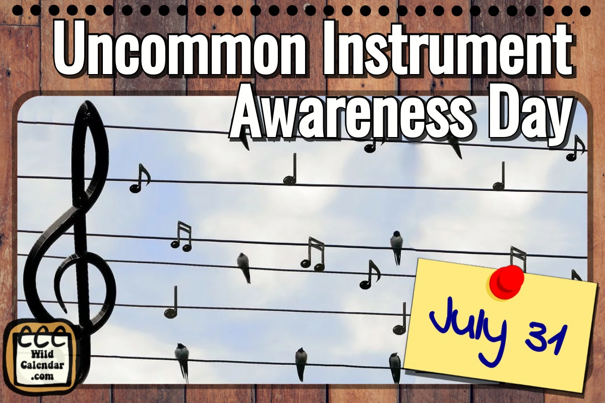 Uncommon Instrument Awareness Day