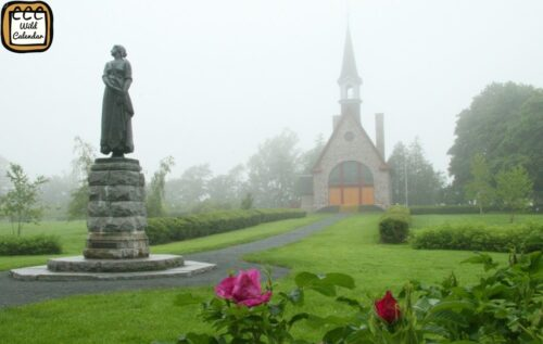 Read more about the article Acadian Day