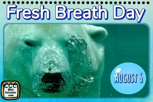 Read more about the article Fresh Breath Day