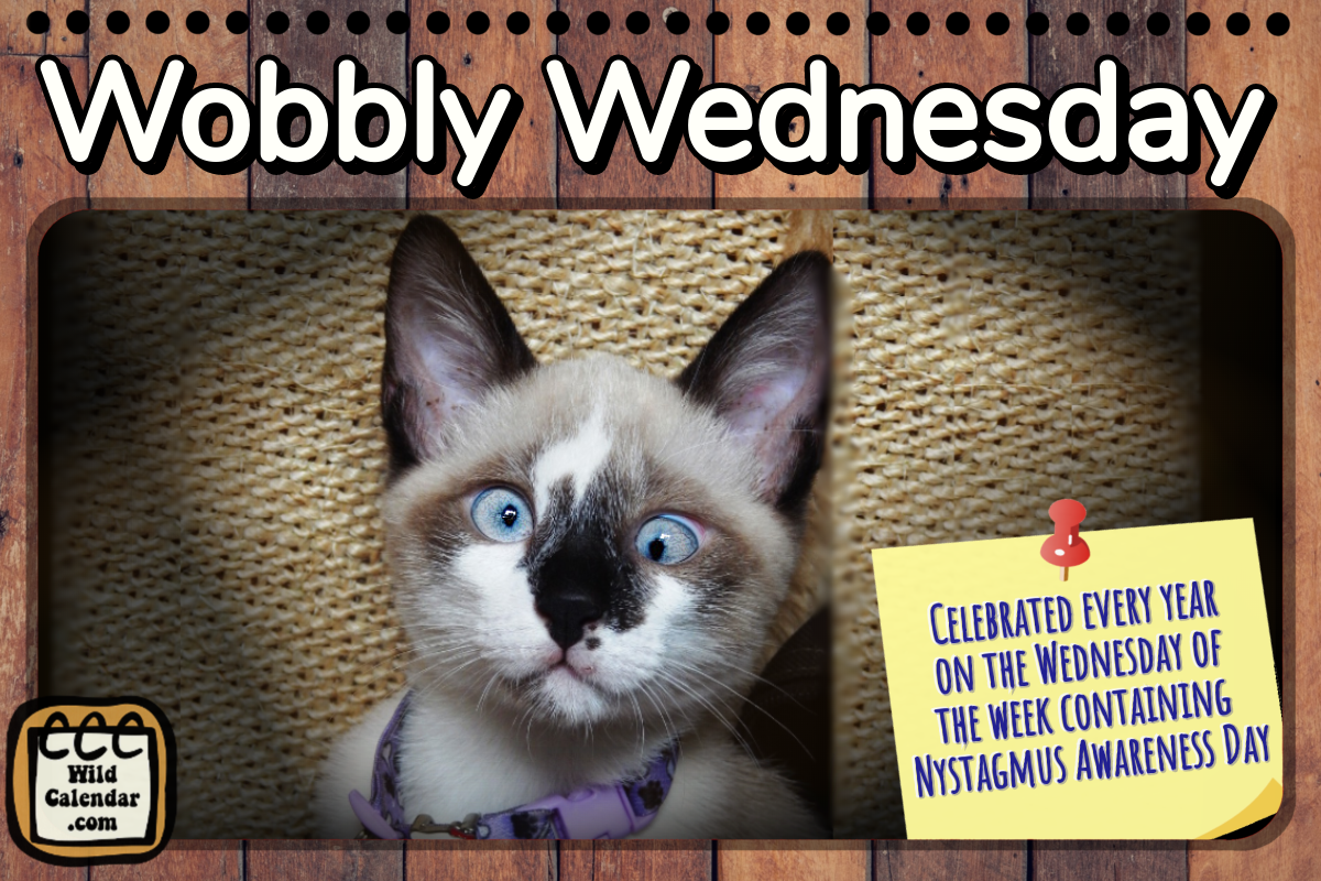 Wobbly Wednesday