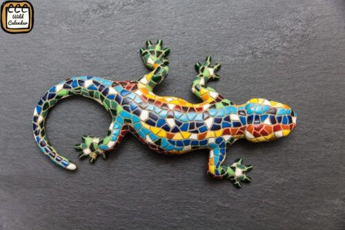 Read more about the article World Lizard Day