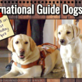 International Guide Dogs Day