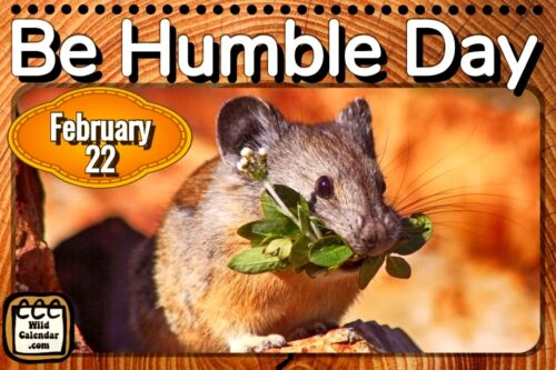 Read more about the article Be Humble Day