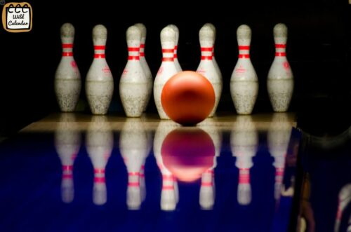 Read more about the article Bowling Day