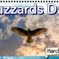 Buzzards Day