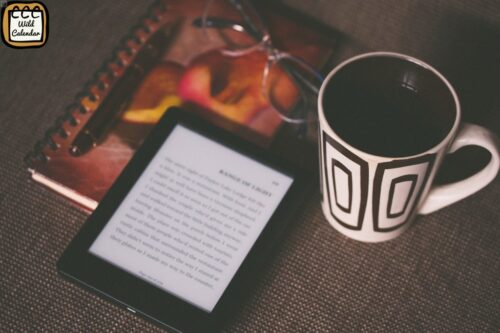 Read more about the article International Read An Ebook Day