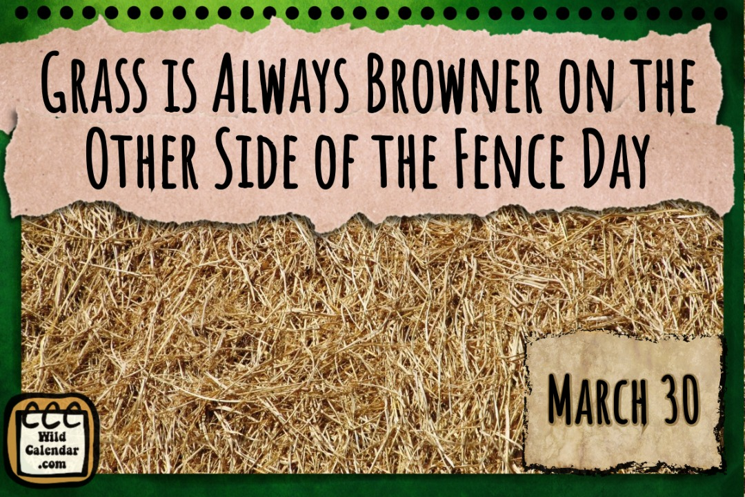 Grass is Always Browner on the Other Side of the Fence Day