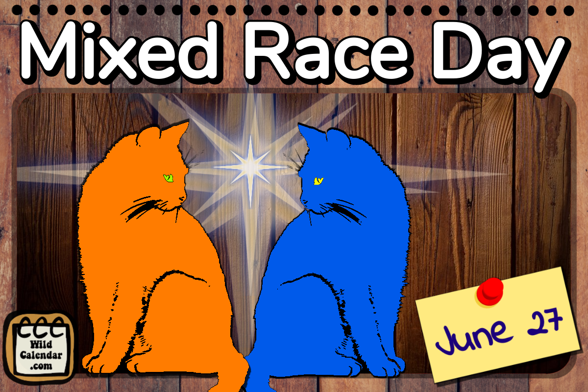 Mixed Race Day