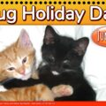 Hug Holiday Day