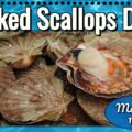 Baked Scallops Day