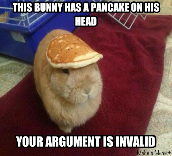 this bunny has a pancake on his head