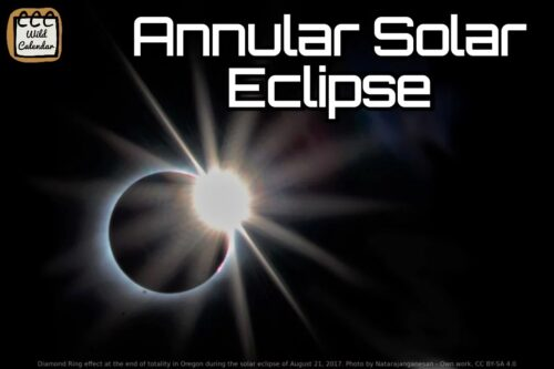 Read more about the article Annular Solar Eclipse